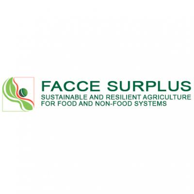 FACCE SURPLUS logo