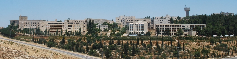 Birzeit University user picture
