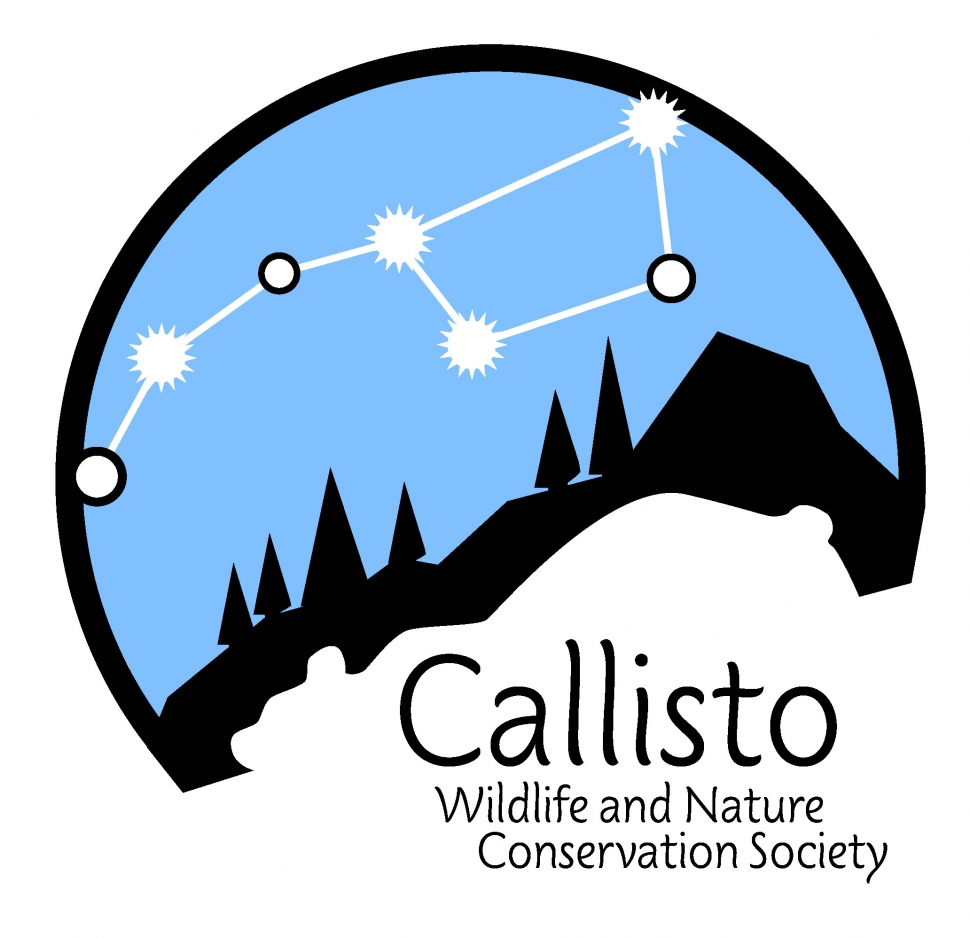 CALLISTO user picture