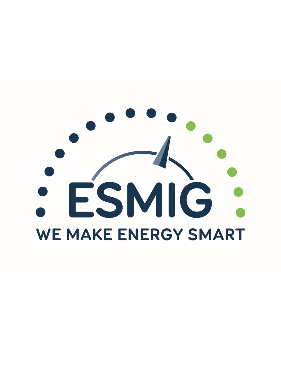 ESMIG- the European voice of smart energy solution providers user picture