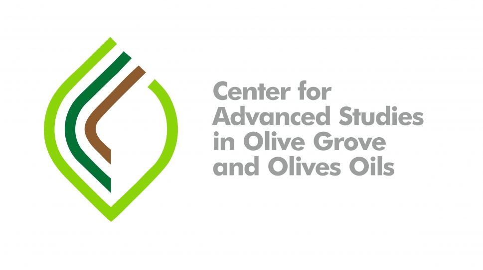 Center for Advanced Studies in Olive Grove and Olive Oils user picture