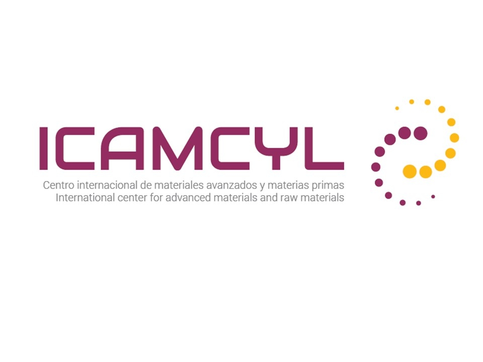 ICAMCYL (International Center in Advanced Materials and raw materials of Castilla y León) user picture